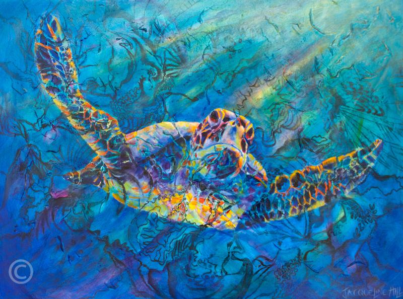 Turtle IIIa-w8(c)